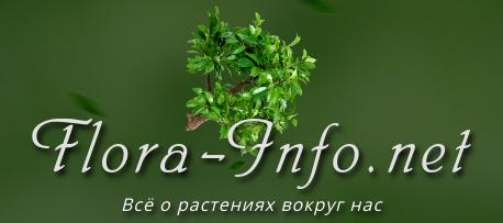 Flora-Info.net