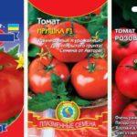 Низкорослые самые ранние томаты (обзор урожайных сортов)