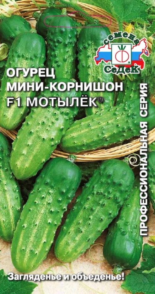 Мотылёк. Агрофирма «Седек», Россия.